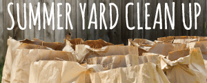 Spring Yard Clean Up